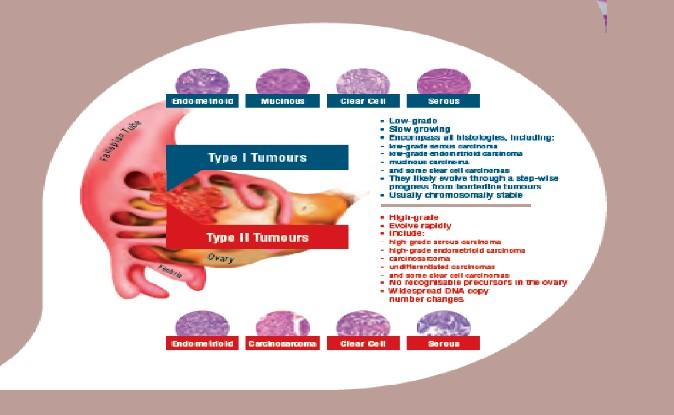KME Test Ginekološka Onkologija Akreditovan Od Strane ZSS
